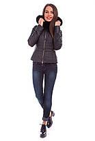 Женское зимнее кашемировое пальто + куртка арт. Твикс зима 4313, фото 3