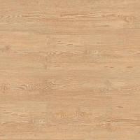 Wheat Pine
