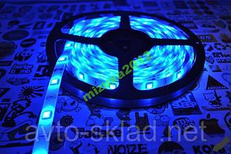 Світлодіодна стрічка (колір синій) 5 метрів SMD 3528