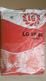 Насіння соняшнику Лімагрейн 5580 (Нова Тунка)