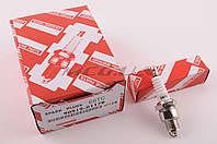 "Свеча   E6TC   ""DNS""   M14*1,25 12,7mm   (2T скутеры 50-125сс)"