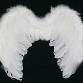 Ангели і демони