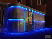 Светодиодная лента (цвет синий) 5 метров SMD 5050