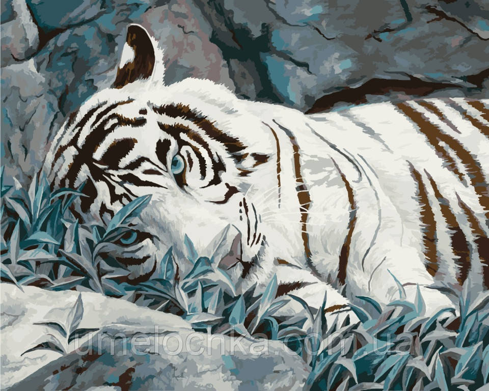 Картина по номерам Идейка Белый тигр (KHO2453) 40 х 50 см