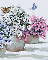 Холст с контуром по номерам без коробки Идейка Цветы в горшочках (KHO2933) 40 х 50 см