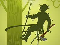 6 советов по срезу лишних веток на дереве