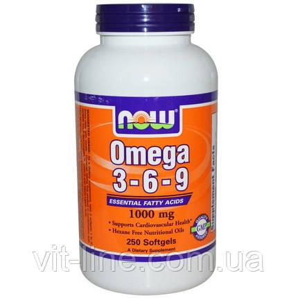 Омега 3-6-9 от Now Foods (1000 мг) 250 капсул, фото 2