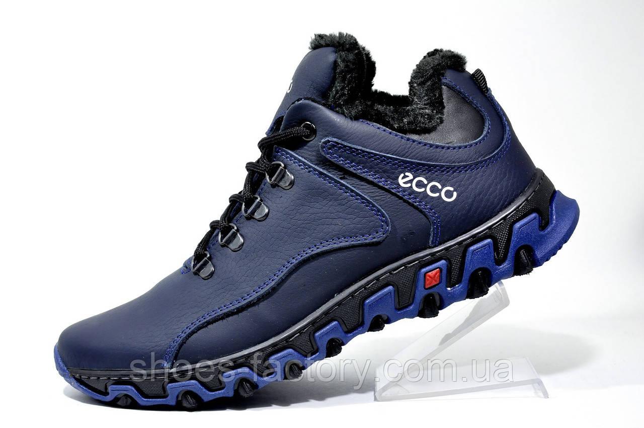 Мужские зимние ботинки в стиле Ecco, (Обувь Экко)