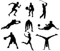 Защита спортивная