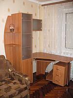 Компьютерный стол с пеналом для книг.