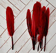 Перо цветное, 13-14 см, 100 шт..  цвет бордовый