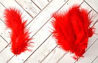 Перо цветное мини, 100 шт, длина 7-10 см, цвет красный