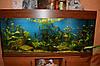 Прямоугольный аквариум травник на 180 л