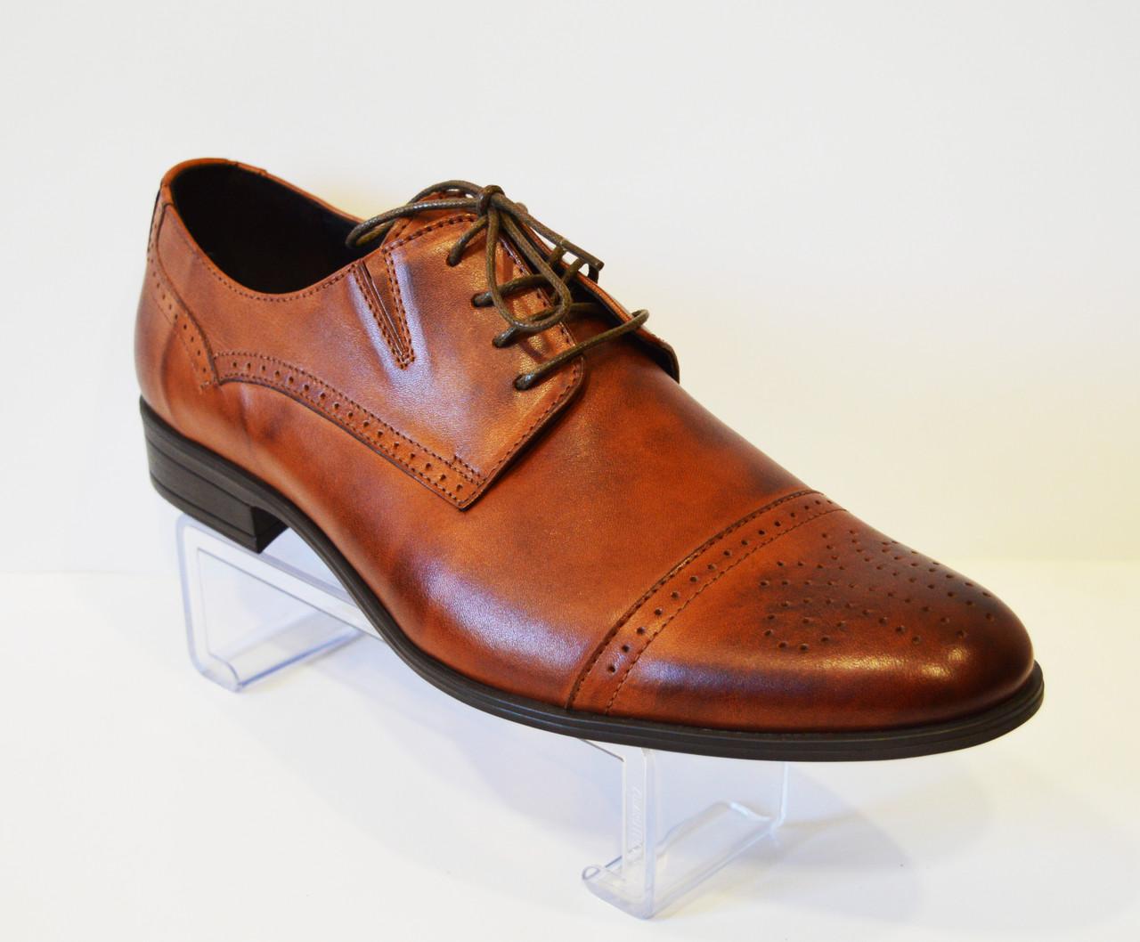 Коричневые мужские туфли Tapi 5158