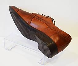 Коричневые мужские туфли Tapi 5158, фото 3