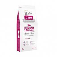 Корм Brit Care Junior Large Breed Lamb с ягненком и рисом для молодых собак крупных пород. Упаковка 12 кг