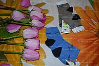 Детские носочки, р.14,деми,1-2,6 лет, фото 1
