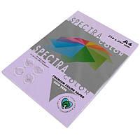 Бумага A4 'Spectra' ПАСТЕЛЬ 185 (Lavender) 100 л./80 гр.