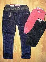 Вельветовые брюки для девочек на флисе, Seagull 98-128 рр