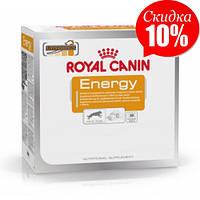 Лакомство Royal Canin Energy, для собак с повышенной физической активностью, 0,05 кг