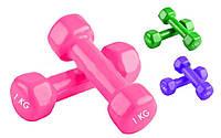 Гантели для фитнеса с виниловым покрытием Радуга (2шт. по 1 кг.)