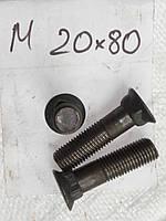 Болт плужный М20х80