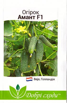 Семена огурца Амант F1 10шт, фото 2