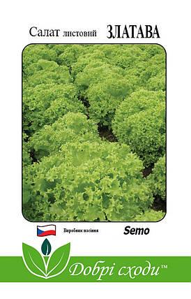 Семена салата Златава 30шт ТМ ДОБРІ СХОДИ, фото 2