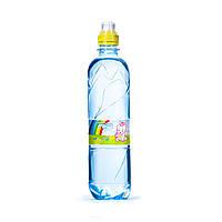 Питьевая вода Аквуля, 0,5 л