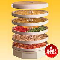 Cушильный аппарат ( СУШИЛКА )  для овощей, фруктов, мяса, рыбы, грибов.          EZIDRI  Snackmaker FD
