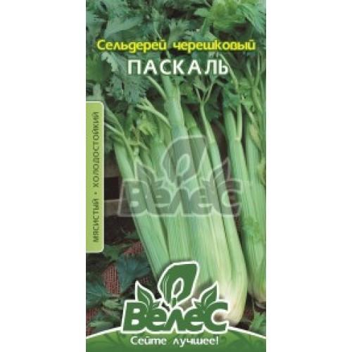Семена сельдерея черешкового Паскаль 0,5 г ТМ ВЕЛЕС