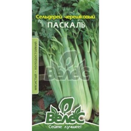 Семена сельдерея черешкового Паскаль 0,5 г ТМ ВЕЛЕС, фото 2