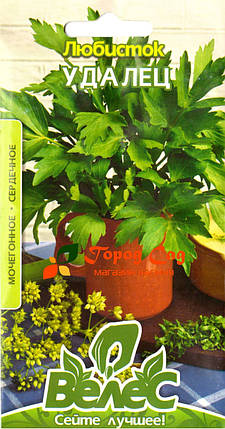 Семена любистка Удалец 0,2г ТМ ВЕЛЕС, фото 2
