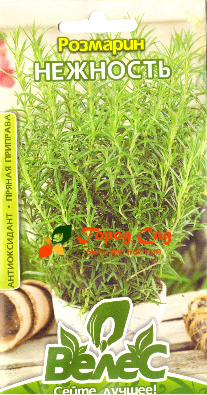 Семена розмарина Нежность 0,05г ТМ ВЕЛЕС