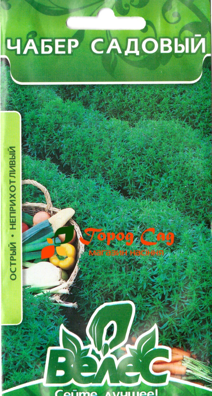 Семена чабера садового Остер 0,5 ТМ ВЕЛЕС