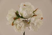 Цветок Хмеля искусственный белый (букет) 5635-1-19