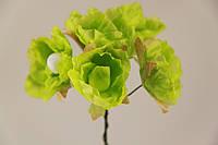 Цветок Хмеля искусственный зеленый (букет) 5635-1-19