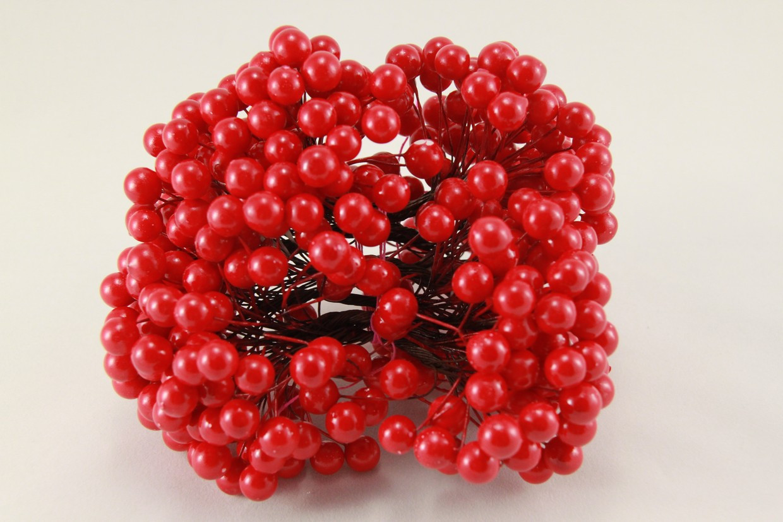 Калина червона 1,2 см