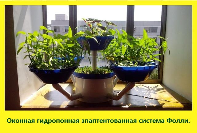 Система гидропоники для дома (на окно)