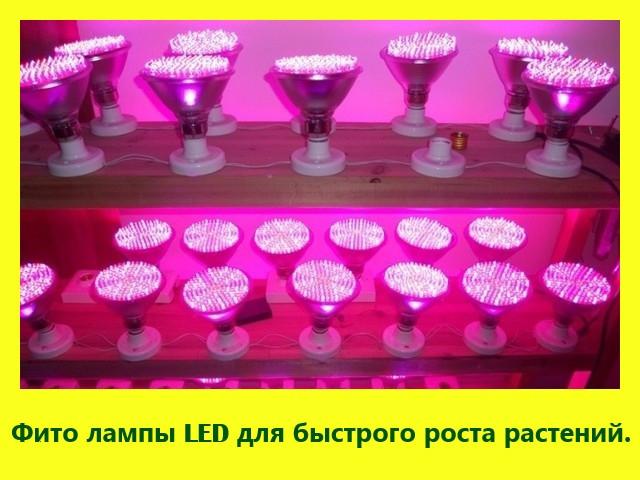 Лампа для роста растений (фитолампа) (LED, 10W)