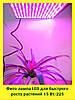 Лампы для растений (Фитолампа) таблетка  (LED, 15Вт)
