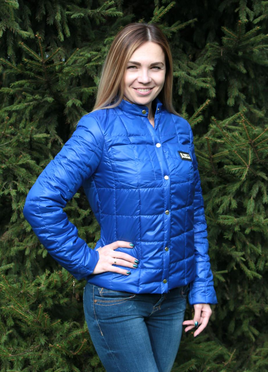 713c36e3ceb6 Куртка женская на синтепоне Fashion синяя S , куртки женские ...