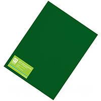 Фетр темно-зеленый 20 листов (1мм/20x30см)