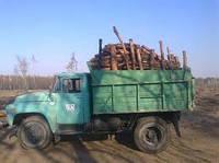 Продажа дров. Дрова дубовые и фруктовые. Дрова твердых пород с доставкой. Заготовка дров