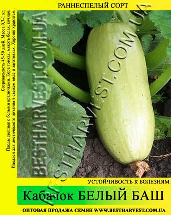 Семена кабачка Белый Баш 10 кг (мешок), фото 2