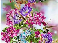 Схема для вышивки бисером Танец колибри