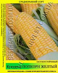 Насіння кукурудзи «Попкорн Жовтий» 1 кг