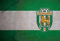 Обложка обкладинка на паспорт Карпати Львів футбол
