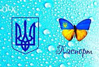 Обложка обкладинка на паспорт метелик