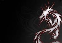 Обложка обкладинка на паспорт Дракон Dragon